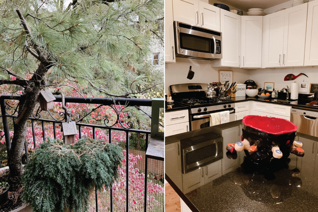 house brooklyn ny gisela gueiros lolla kitchen tress - Um Apartamento Artsy no Brooklyn, NY